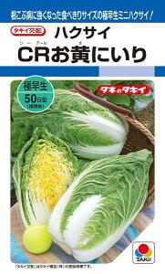 ミニハクサイ 種 『CRお黄にいり』 ペレットL5000粒 タキイ種苗