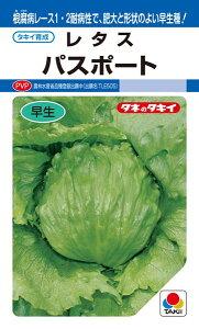 結球レタス 種 『パスポート』 ペレットL5000粒 タキイ種苗