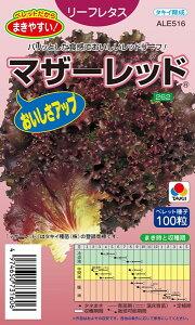 サニーレタス 種 『マザーレッド』 ペレット小袋100粒 タキイ種苗