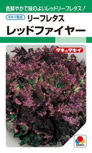 サニーレタス 種 『レッドファイヤー』 ALE530 タキイ種苗/ペレットL5000粒