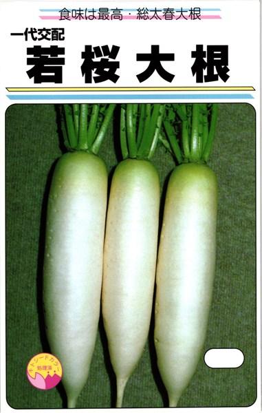 ミニダイコン 種 『若桜』 3.5ml(小袋) 渡辺農事
