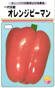 パプリカ 種 『オレンジピーマン』 17粒(小袋) 渡辺農事