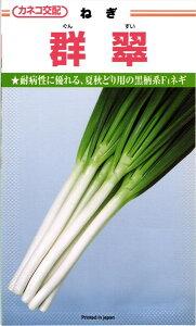 カネコ種苗 ネギ 群翠(ぐんすい)2dl