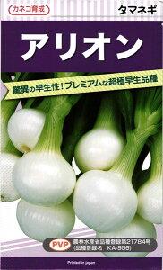 カネコ種苗 タマネギ 玉ねぎ アリオン 20ml PVP