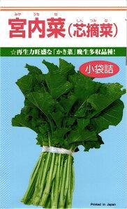 カネコ種苗 カキナ かき菜 宮内菜 小袋
