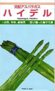 カネコ種苗 アスパラガス ハイデル 20ml