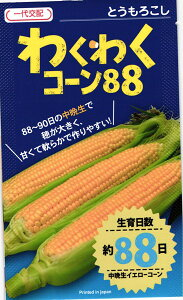 カネコ種苗 トウモロコシ コーン わくわくコーン88  100粒