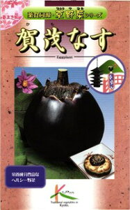 タカヤマシード 京野菜 賀茂茄子 小袋