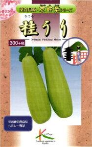 たね タカヤマシード 京野菜 桂うり 小袋