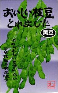 渡辺農事 エダマメ 枝豆 おいしい枝豆とれました (黒豆)1dl