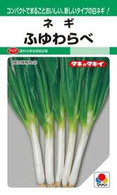 タキイ種苗 ネギ 葱 ふゆわらべ 1dl