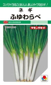 タキイ種苗 ネギ 葱 ふゆわらべ GF PVP