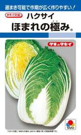 タキイ種苗 ハクサイ 白菜 ほまれの極み DF