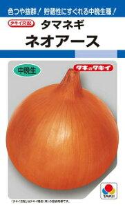 タキイ種苗 タマネギ 玉葱 ネオアース RF