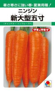 タキイ種苗 ニンジン 人参 新大型五寸(チャンテネー・インプルーブド)2dl