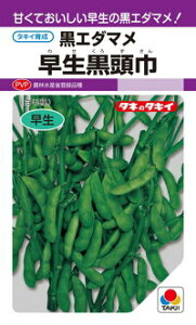 タキイ種苗 エダマメ 枝豆 早生黒頭巾 1L