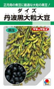 タキイ種苗 ダイズ 大豆 丹波黒大粒大豆 1dl