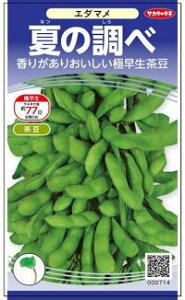サカタのタネ エダマメ 枝豆 夏の調べ 1dl