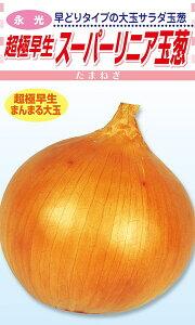 松永種苗 タマネギ 超極早生玉葱 スーパーリニア 20ml