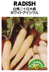 藤田種子 白長二十日大根 ホワイトアイシクル 小袋