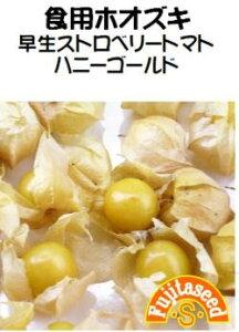 藤田種子 早生ストロベリートマト ハニーゴールド 小袋