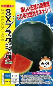 ナント種苗 スイカ 3Xブラックジャック(シードレス西瓜)小袋