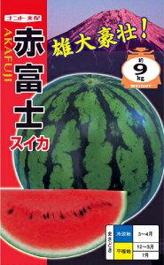 たね ナント種苗 スイカ 種子 赤富士 小袋