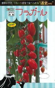 トキタ種苗 ミニトマト フラガール 小袋