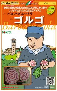 トキタ種苗 イタリア野菜 ゴルゴ 1000粒