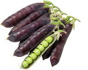 大和農園 エンドウ ツタンカーメンのエンドウ豆 小袋