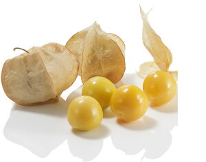 たね 大和農園 食用ほおずき 種子 キャンディーランタン 100粒
