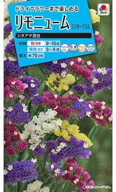 タキイ種苗 草花 種子 リモニューム(スターチス)・シヌアタ混合