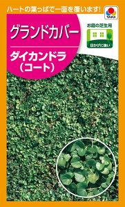 タキイ種苗 緑肥 芝草 種子 ダイカンドラ (コート種子) 1袋(約1m2分)