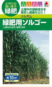 タキイ種苗 緑肥 種子 ソルガム 緑肥用ソルゴー