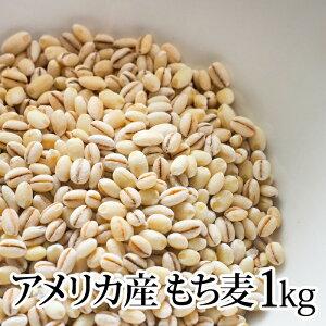 【アメリカ産 もち麦 1kg 】種商 TV 話題 健康 ヘルシー テレビ もちもち 食物繊維 美容 人気 もちむぎ 5kg 10kg