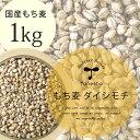 【国産 もち麦 1kg(ダイシモチ)】種商 TV 話題 健康 ヘルシー テレビ もちもち 食物繊維 美容 人気 もちむぎ 5kg 10kg