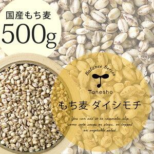【国産 もち麦 500g(ダイシモチ)】種商 TV 話題 健康 ヘルシー テレビ もちもち 食物繊維 美容 人気 もちむぎ 5kg 10kg