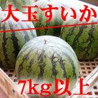 【スイカ送料無料】【大玉スイカ】【すいか大玉】【7kg以上スイカ】【すいか割りに】