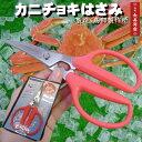 ★Birmy【カニチョキ】蟹専用調理はさみ/よく切れてとても使いやすいと評判のはさみです【鳥部製作所】【蟹 ハサミ】【蟹はさみ】【…