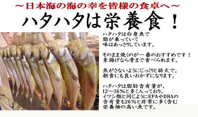 はたはた一夜干し・ハタハタ一夜干し・日本海産干物