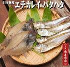 丹後のまるごとハタハタとエテカレイの干物セット海鮮干物セットえてかれい干物セット