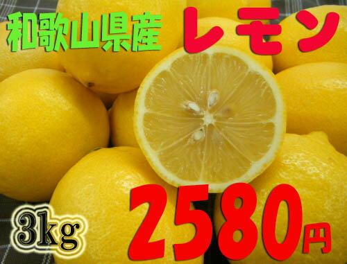 紀州和歌山♪ 国産レモン 大粒 3kg 2,580円 【送料無料】
