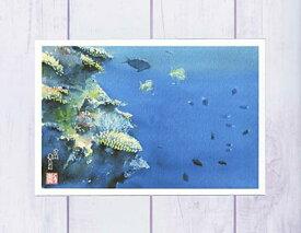 沖縄 慶良間の海中3 ( ポストカード 絵葉書 絵はがき 夏 沖縄 慶良間 ケラマ 海 熱帯魚 イソギンチャク 水彩画 風景画 )