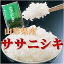 【28年産】【送料無料】山形県産ササニシキ 白米 10kg