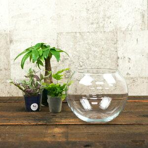 【器】 ガラス フローラボールS(120) ハイドロカルチャー 向き