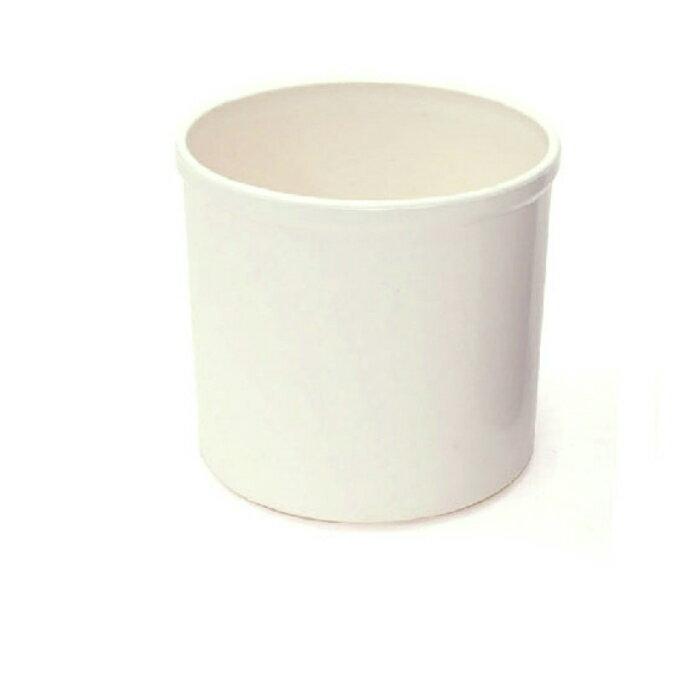 【器】 コロナ130ホワイト ハイドロカルチャー苗13パイ用 観葉植物