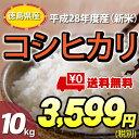 【お取り寄せ】【★】徳島県 産 こしひかり お米 10kg 送料無料お米 10kg 送料無料!一部地域を除く