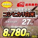 【★】平成29年度産 新米<徳島県産こしひかり>白米27kg【送料無料!一部地域を除く】