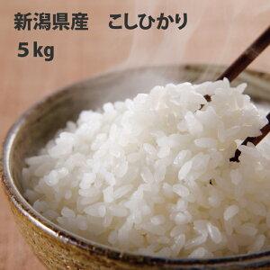 新潟県産 米 こしひかり5kg【送料無料!一部地域を除く】令和元年産 新米