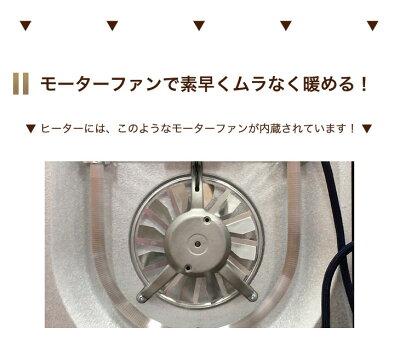 ヴィクトリア120+フィルケア無地小野末吉